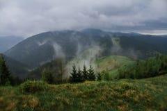 Rayons du soleil de brouillard de rosée de matin en montagnes Image stock