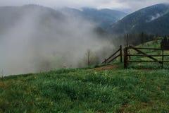 Rayons du soleil de brouillard de rosée de matin en montagnes images stock