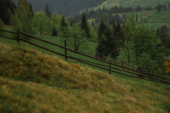 Rayons du soleil de brouillard de rosée de matin en montagnes Photos libres de droits