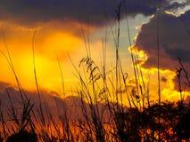 Rayos anaranjados de los puntos culminantes de la puesta del sol las nubes de cúmulo oscuras foto de archivo libre de regalías