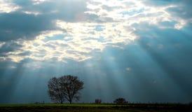 Rayos de la sol Fotos de archivo libres de regalías