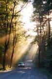 Rayos de sol en el bosque y el coche Imagen de archivo libre de regalías