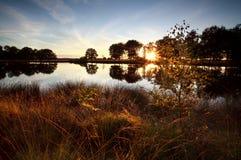 Rayos de sol a través de árboles por el lago Foto de archivo