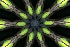 Rayos del caleidoscopio Fotografía de archivo