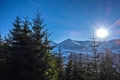 Rayos del invierno fotografía de archivo