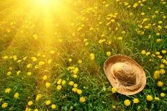 Rayos del sol en hierba con el sombrero de paja foto de archivo