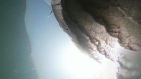 Rayos del sol a través de las medusas en la superficie de la opinión inferior de mar metrajes
