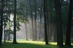 Rayos ligeros Fotografía de archivo libre de regalías