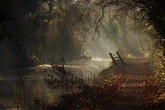 Rayos y neblina Foto de archivo libre de regalías