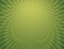 Rays  in abstract green  universe Royalty Free Stock Images