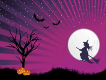Rays background with halloween witch Royalty Free Stock Image
