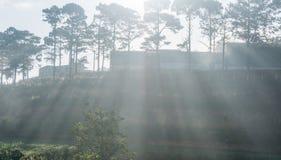 Rays Dalat- Vietnam. Sunrises somwhere near Dalat city - in Dalat- VietNam- LamDong- VietNam Royalty Free Stock Images