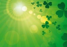 Rays green with shamrocks. Green flared sun with shamrocks Royalty Free Stock Photography
