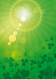 Rays green with shamrocks vert Stock Photography