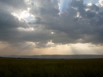 Rays of light streaming through dark clouds over African plains stock images