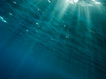 Rays of light from the surface to depth. The underwater picture with the rays of light from the surface to depth royalty free stock photos