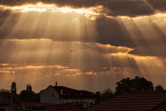 Rays of lights at sunrise with beautiful clouds and birds flying Stock Image