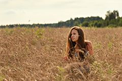 In the rays of a serene evening sunset on a wheat field behind the spikelets is a girl in a retro dress royalty free stock photography