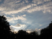 The rays of setting sun in city park  at evening Royalty Free Stock Photo