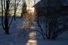 Rays of the setting winter sun Stock Photo
