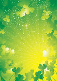 Rays shamrock border green Stock Images
