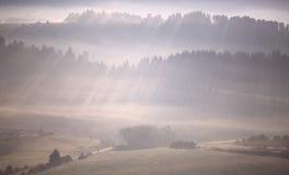 Rays shines through fog Royalty Free Stock Image