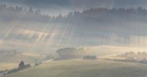 Rays shines through fog Stock Images