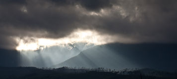 Rays of the sun Stock Photo