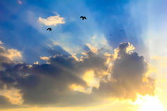 Rays of the sun through the clouds royalty free stock photo