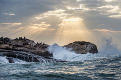 The rays of the sun through the clouds in the dawn sky, the waves breaking with the spray on the rocks stock images