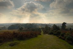 Rays of sun from clouds and new forrest countryside. Visible rays of sun from clouds in the New Forrest countryside in Hampshire , United Kingdom stock photography