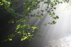 The sun`s rays illuminate the dark gorge stock photo