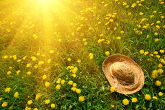 Rays of sun on grass with straw hat Stock Photo