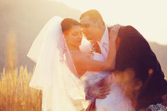 The rays of sun illuminate a wedding couple standing among the w. Heat a Royalty Free Stock Photography