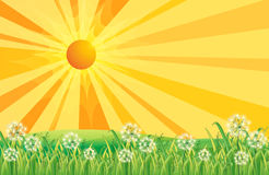 Rays of the sun Royalty Free Stock Images