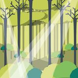 Rays of sun light entering in a green forest landscape. Vector illustration graphic design Royalty Free Stock Image