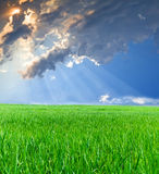 Rays of the sun penetrate through clouds. Of blue sky  on the green grass Royalty Free Stock Photography