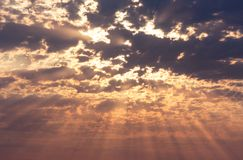 Rays of the sun on sky Royalty Free Stock Photo