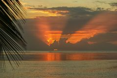 Rays of sunlight behind the clouds above the sea. Rays of orange sunlight behind the clouds above the ocean on a tropical island with palm leaf in the front Royalty Free Stock Photography