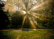 Rays of sunlight in a wooded area. Morning Rays of sunlight in a wooded area with picnic tables in the foreground, during summer in Pennsylvania stock image
