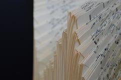 Rayure musicale de cru Images stock