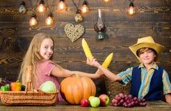 Razões pelas quais cada criança deve experimentar cultivar Responsável guardado para tarefas diárias da exploração agrícola Menin foto de stock