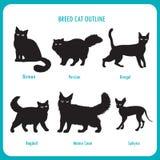 Raza Cat Outline Icons Vector blanco y negro en un fondo blanco Imagen de archivo libre de regalías