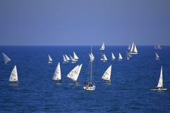 Raza de barcos de navegación Fotografía de archivo libre de regalías