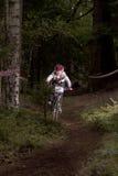 Raza de ciclo - cuesta abajo en el bosque Imagenes de archivo