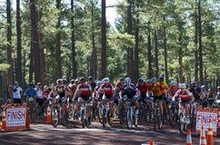Raza de la bici de montaña Imagenes de archivo