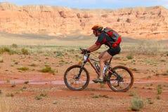 Raza de la bici en montañas del desierto fotos de archivo libres de regalías