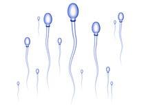 Raza de la esperma Foto de archivo