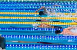 Raza de la natación del comienzo de los hombres Imagen de archivo libre de regalías