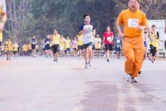 Raza de los corredores de maratón en 2015 Imagen de archivo